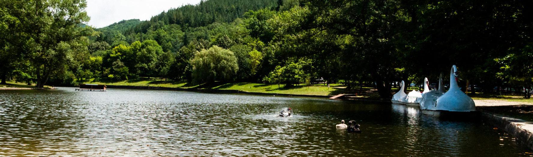 Уникалният 🙏 Парк Бачиново - Благоевград